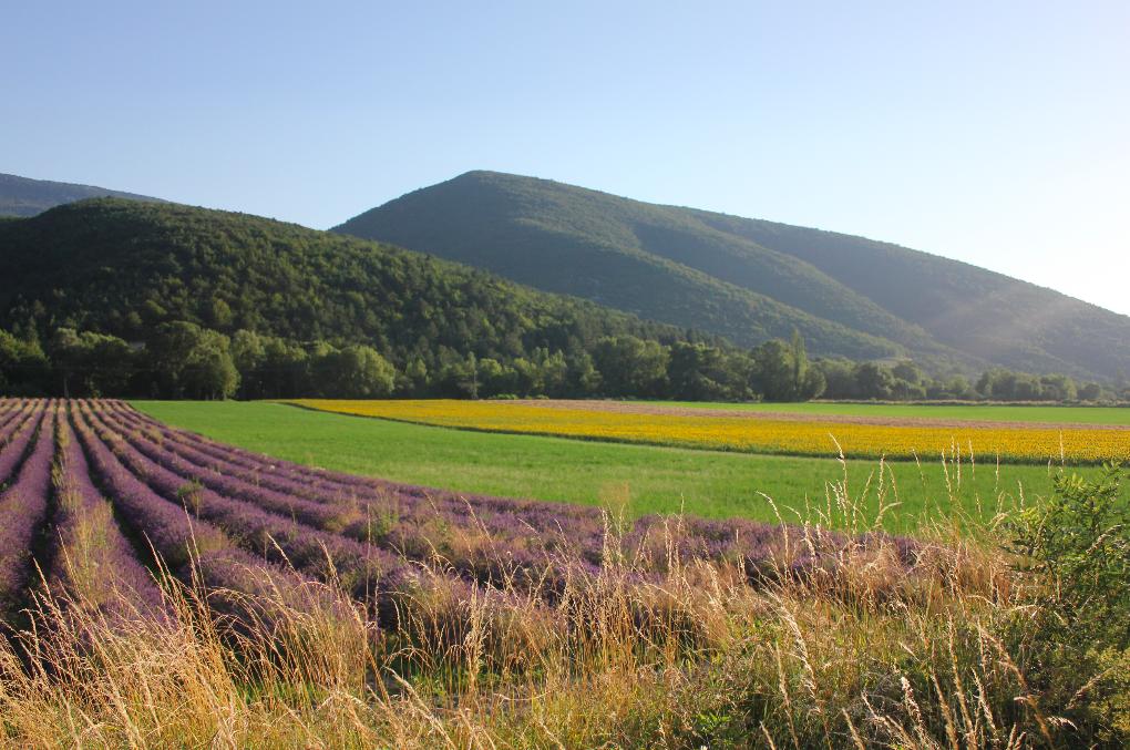 La région de ma maison familiale, dans la Drôme Provençale.