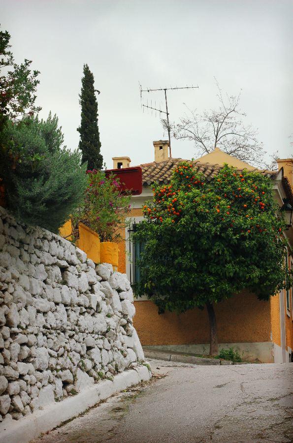Athènes Plaka